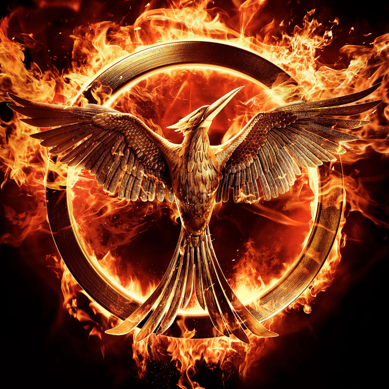 The Hunger Games Life Lessons Motivation